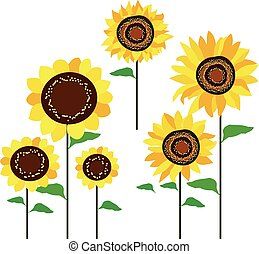 colored sunflowers vector