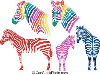 Colored zebras, vector set