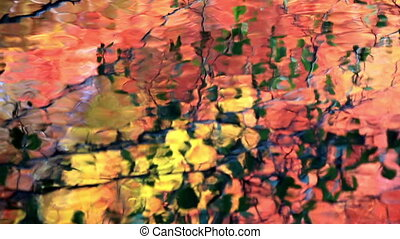 Colorful Abstract Autumn Leaves Wat