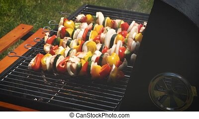 Colorful and tasty grilled shashliks on outdoor summer ...