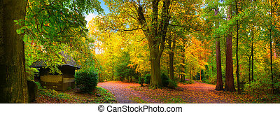 Colorful and tranquil autumn scenery