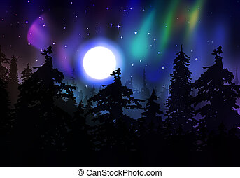 Colorful Aurora Borealis - Northern lights, aurora borealis...