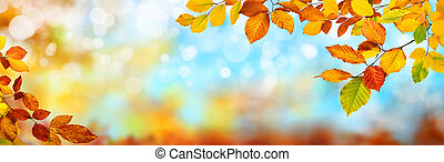 Colorful autumn background, extra wide