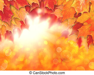Colorful autumn background. Fall leaves and abstract sun light