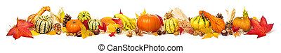 Colorful autumn decoration, extra wide format