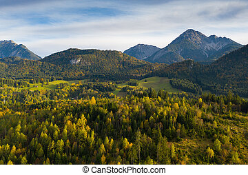 colorful autumn fall trees panorama in austrian alps
