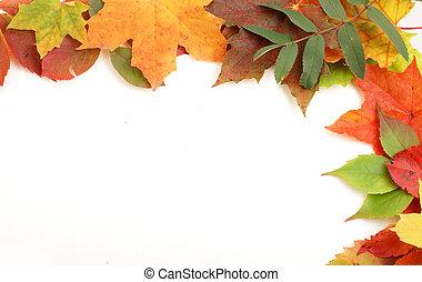 Colorful autumn frame