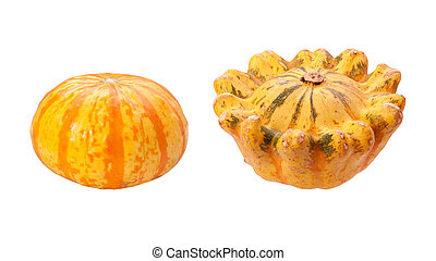 Colorful Autumn Gourds isolated  with a clipping path