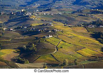 Colorful autumn hills of Langa Piedmont Italy