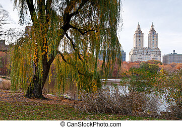 Colorful autumn in Central Park