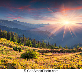 Colorful autumn landscape in mountains. Sunset