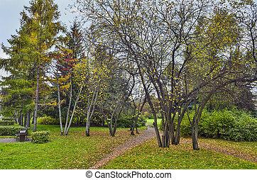 Colorful autumn landscape in the city park