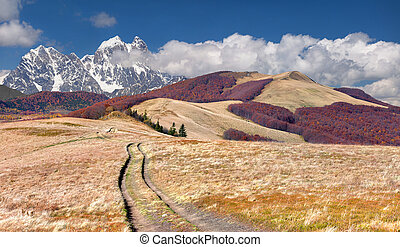 Colorful autumn landscape in the mountains