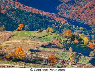Colorful autumn landscape in the mountain village.