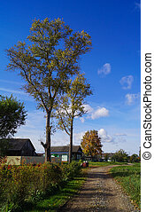 Colorful autumn landscape in the village with blue sky
