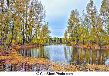 Colorful autumn landscape on the lake - beauty of autumnal nature