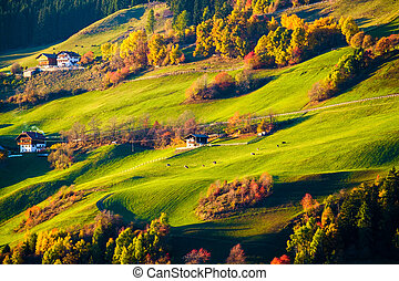 Colorful autumn landscape scene