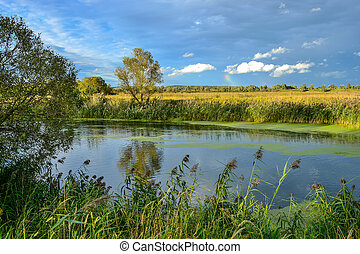 Colorful autumn landscape with a river and clouds