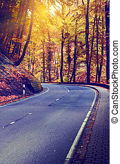 Colorful autumn landscape with curvy road