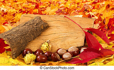 colorful autumn leaves and chestnuts