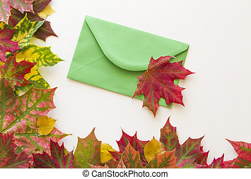 Colorful autumn leaves and green envelop on white background. Close up.