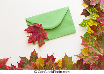 Colorful autumn leaves and open envelop on white background. Close up.