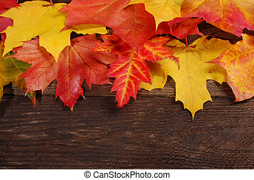autumn leaves border on wooden background