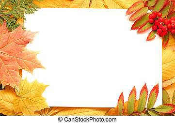 Colorful autumn leaves border or frame. Beautiful seasonal concept