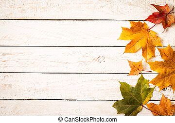 Colorful autumn leaves on white rustic background.
