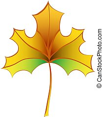 Colorful Autumn Maple Leaf. Vector Illustration