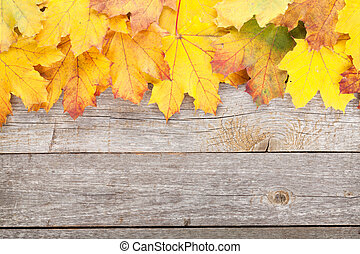 Colorful autumn maple leaves on wooden table