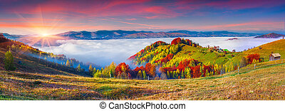 Colorful autumn panorama of the mountains.
