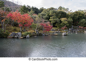 Colorful autumn park and pond with red maple trees background in Tenryuji temple garden at Kyoto