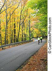 Colorful Autumn Scenic Road