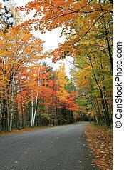 Autumn Scenic Road