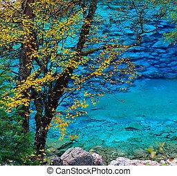 Colorful Autumn - Jiuzhaigou Valley Scenic and Historic...