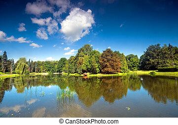 Colorful autumn summer park