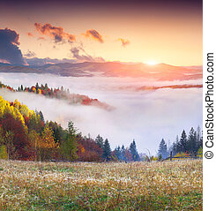 Colorful autumn sunrise in the; mountains.