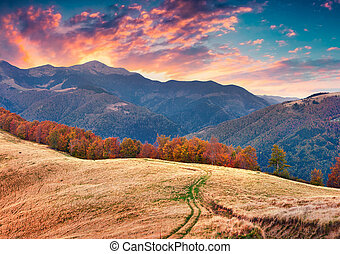 Colorful autumn sunset in the Carpathian mountains. Tarantyn...