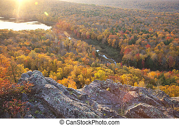 Colorful autumn trees in early morning light