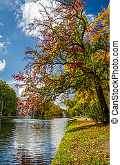 Colorful autumn trees in the park by the river