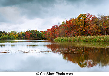 Colorful autumn trees on the lake