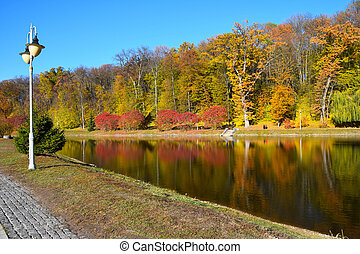 Colorful autumn trees with water reflection