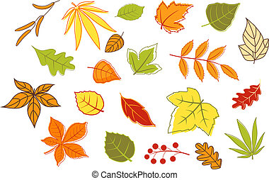 Colorful autumnal leaves and plants