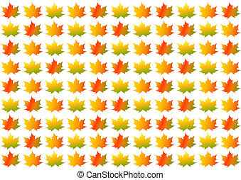 Colorful autumn/fall leaves on white background