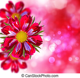 Colorful background with pink flowers