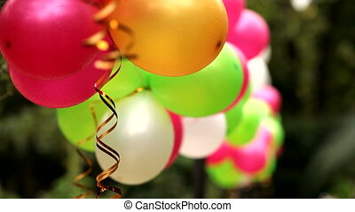 Colorful balloons - Several colorful festive balloons...