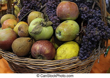 colorful basket of fruits