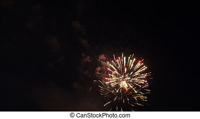 Colorful, beautiful fireworks explode in the night sky. -...