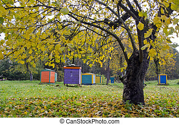 colorful beehive in autumn time garden